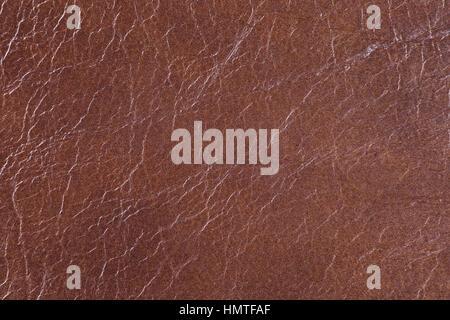 Le cuir, la peau, la texture, l'arrière-plan Banque D'Images