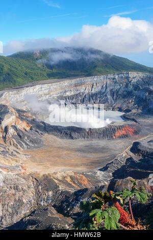 Caldeira avec le lac du cratère, la vapeur passant de Poas Volcano, Poas Volcano National Park, costa rica