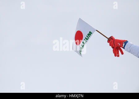 Sunkar Saut à ski international complexe, Almaty, Kazakhstan. Feb, 2017 5. Vue générale, le 5 février 2017 - Saut Banque D'Images
