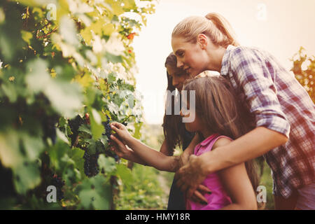 La famille vigneron heureux ensemble dans la vigne avant la récolte Banque D'Images