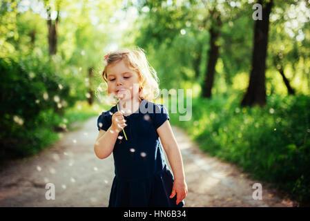 Enfant avec dandelion Banque D'Images