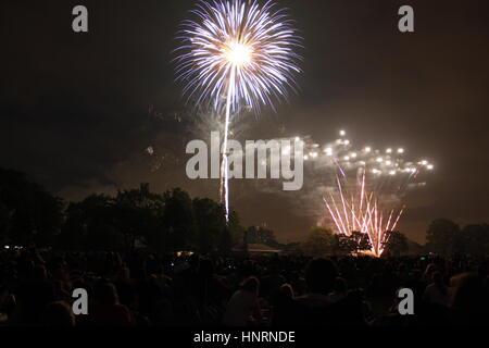 D'artifice du 4 juillet dans le parc de nuit Banque D'Images