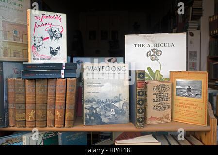 Vintage Books en vente dans une librairie d'occasion à Edimbourg, Ecosse, Royaume-Uni Banque D'Images