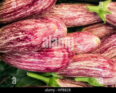 Aubergines Aubergines avec strieps sur un marché de producteurs à Rome Banque D'Images