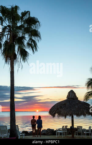 Key Largo Florida East Florida Keys Gilbert's Resort waterfront sonore Blackwater sunset palm tree silhouette parapluie Banque D'Images
