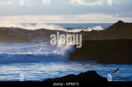Paparoa Punakaiki, Parc National, côte ouest, Nouvelle-Zélande. Vagues puissantes de la mer de Tasman se briser sur les rochers.