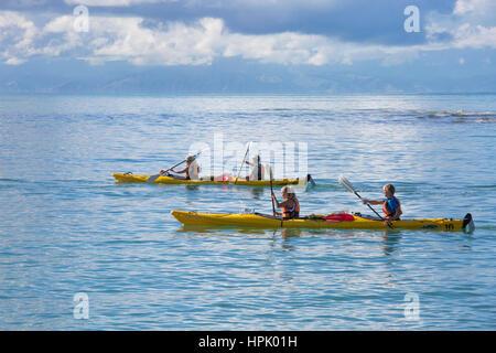 Marahau, Tasman, Nouvelle-Zélande. Les kayakistes pagayant dans les eaux tranquilles de la baie de sable vers l'Abel Tasman National Park.
