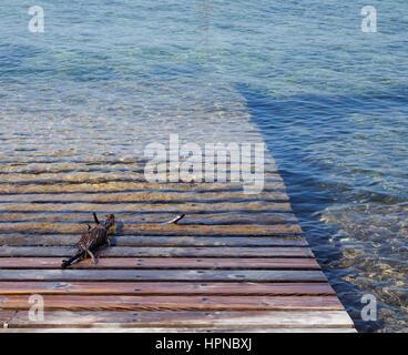 Lagon avec accès à près de la mer à Sant Francesc Xavier Fomentera Espagne Banque D'Images