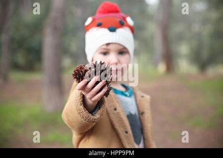 Boy wearing wooly hat in forest holding pommes de pin Banque D'Images