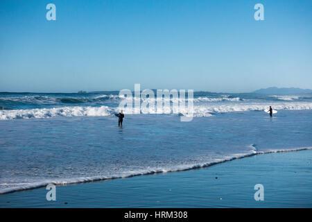Surfer à long beach, Tofino (Colombie-Britannique) Banque D'Images