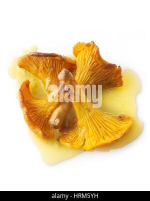 Wiild chanterelle ou girolle organiques Champignons (Cantharellus cibarius) ou sautés dans du beurre. Banque D'Images
