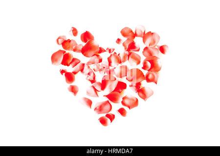 Coeur en pétales de rose rouge sur fond blanc Banque D'Images