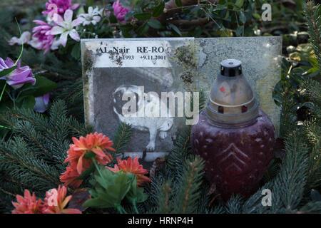 Cimetière pour animaux abandonnés à Prague, République tchèque. Les seuls animaux à Prague cimetière situé dans Banque D'Images