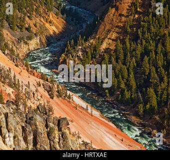 Le Parc National de Yellowstone, Wyoming, USA Banque D'Images