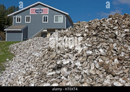 La qualité des huîtres de Fanny Bay le domaine de l'île de Vancouver (Colombie-Britannique) Canada