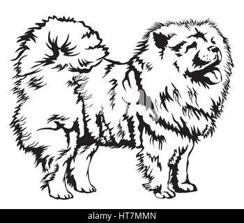 Noir et blanc décoration chien Chow Chow vector illustration Banque D'Images