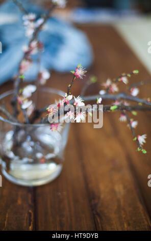Direction générale de la branche s'épanouit sur table en bois et de l'espace vide pour le texte. Copier l'espace. Le printemps!