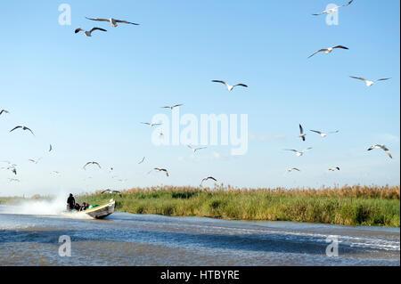 Myanmar (ex-Birmanie). Lac Inle. Etat Shan. Bateau sur le lac // Myanmar (ex-Birmanie). Lac Inle. L'état Shan. Bateau Banque D'Images