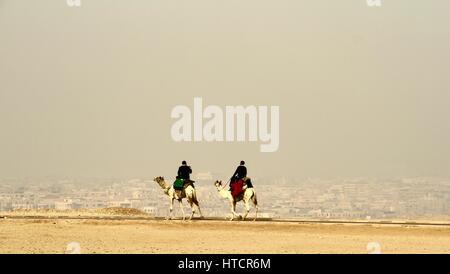 L'Egypte, pyramides, Gizeh, Le Caire, brumeuse du Chameau Banque D'Images