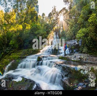 Randonneur à McLean, chute d'Étoiles, Le Soleil, Catlins, Southland Otago, Nouvelle-Zélande Banque D'Images
