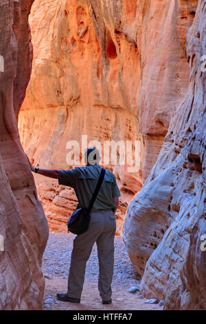 Slot Canyon, coupoles blanches, vallée de feu, parc overton, Nevada, USA Banque D'Images