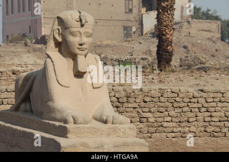 Avenue de Sphinx au complexe du temple de Louxor en Égypte Banque D'Images