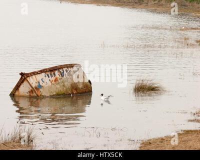 Un bateau submergé et l'aile dans l'eau à côté.