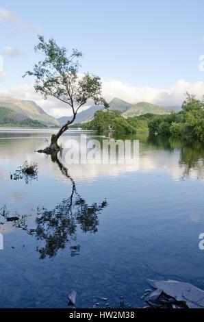 Llyn Padarn, Llanberis, au nord du Pays de Galles, Royaume-Uni. Banque D'Images