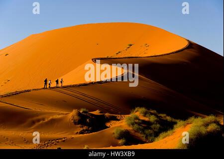 L'escalade des Dunes de Sossusvlei tourista, Parc National Namib Naukluft, Namibie Banque D'Images