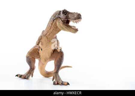 Dinosaure Tyrannosaurus Rex avec la bouche ouverte en position d'attaque - Fond blanc Banque D'Images