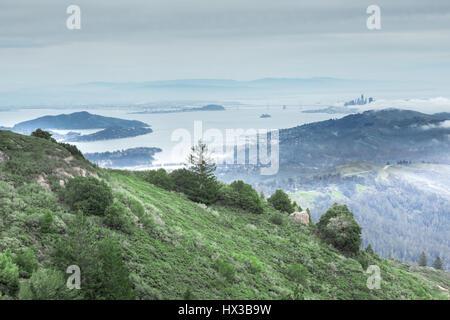 Baie de San Francisco depuis le Mont Tamalpais pic de l'Est Banque D'Images