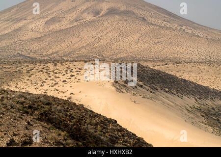Dünen im Naturpark Jandia, Risco del Paso, Insel Fuerteventura, Kanarische Inseln, Spanien | dunes du Parc Naturel Banque D'Images