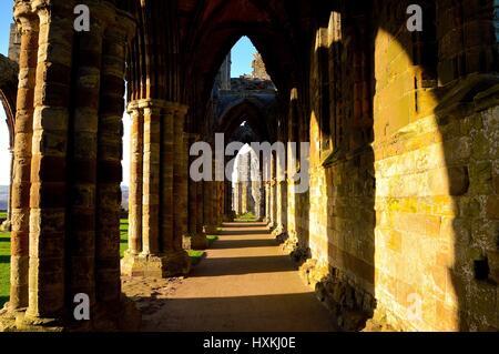 L'Abbaye de Whitby-Côté Nord Banque D'Images