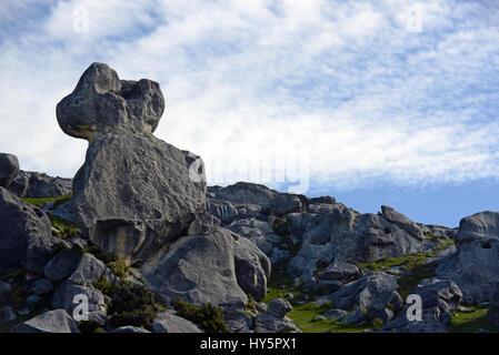 Les affleurements calcaires à Castle Hill, South Island, New Zealand Banque D'Images