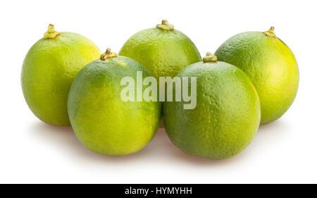 citron vert isolé Banque D'Images