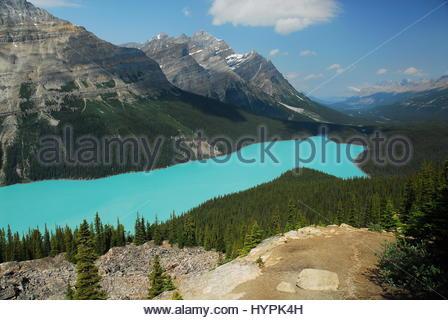 Le lac Peyto vu de sommet Bow, Peyto Lake, Alberta, Canada. Le Parc National de Banff dans les Rocheuses canadiennes Banque D'Images
