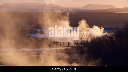 La région des sources chaudes de Geysir (Strokkur) dans le cercle d'or dans le hotspot géothermique de l'eau buses Banque D'Images