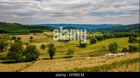 Paysage du Parc naturel régional du Livradois Forez près d'Ambert. Puy de Dôme. L'Auvergne. France