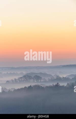Château de Corfe, Dorset, UK. 8 avril 2017. Misty crisp glorieux lever de soleil sur l'île de Purbeck en regardant Banque D'Images