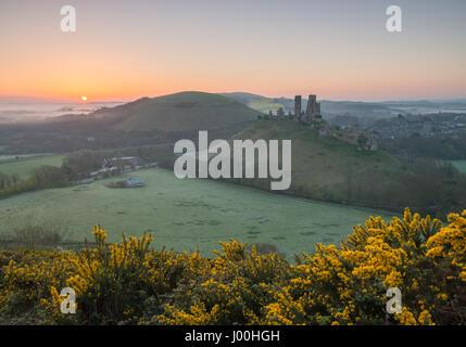 Château de Corfe, Dorset, UK. 8 avril 2017. Misty crisp glorieux lever de soleil sur l'île de Purbeck et l'emblématique, Banque D'Images