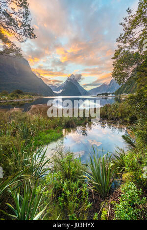 Mitre Peak, Coucher de soleil, Milford Sound, Fiordland National Park, Te Anau, Région de Southland, Southland, Banque D'Images
