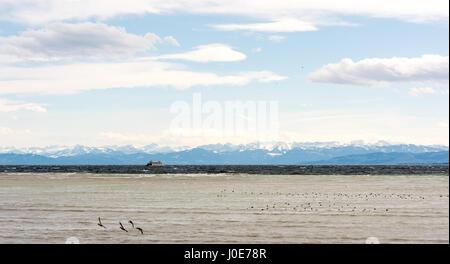 Beau panorama sur le lac de Constance Banque D'Images
