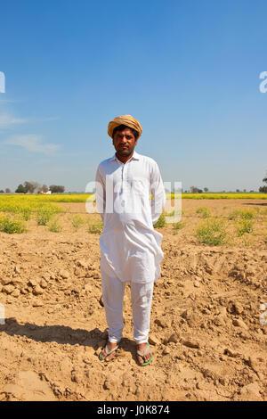 Un jeune agriculteur du Rajasthan avec turban blanc et Salwar Kameez debout sur un sol sablonneux avec des cultures Banque D'Images
