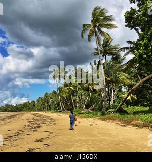 Mission Beach sur la pittoresque côte casoar dur entre Tully et Innisfail dans le nord du Queensland, au-delà de Banque D'Images