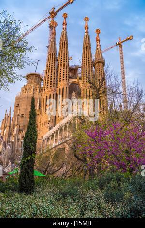 Barcelone, Catalogne, Espagne: Basicila et Église expiatoire de la Sainte Famille, connu sous le nom de Sagrada Banque D'Images