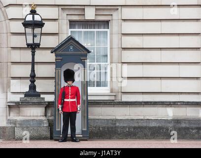 Guardsman Coldstream sentinelle sur l'extérieur de Buckingham Palace. Londres, Angleterre Banque D'Images