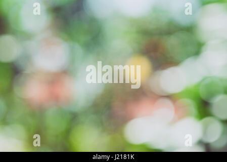 Bokeh vert nature sur l'art de flou artistique en arrière-plan flou abstrait Banque D'Images