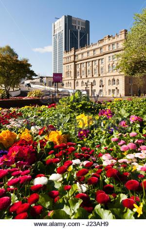 Fleurs colorées dans le centre-ville de Blackburn. Banque D'Images