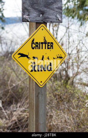 Critter jaune crossing sign post le chemin Lakeside rural. Banque D'Images