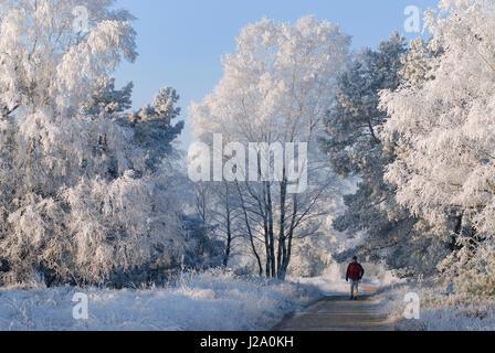Un randonneur dans un paysage enneigé